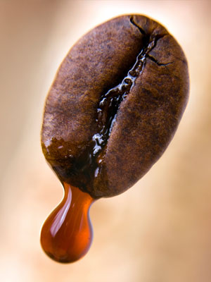 O kawie PADS